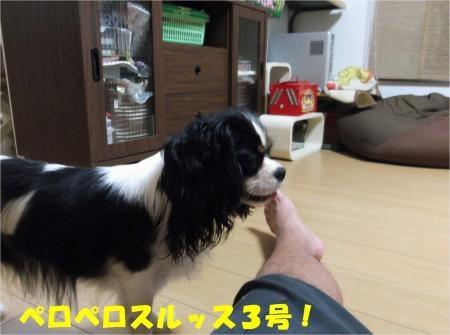 06_convert_20121005180940[1]