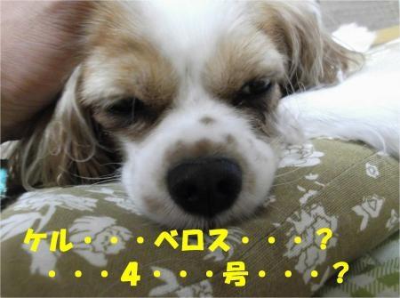07_convert_20121005181040[1]