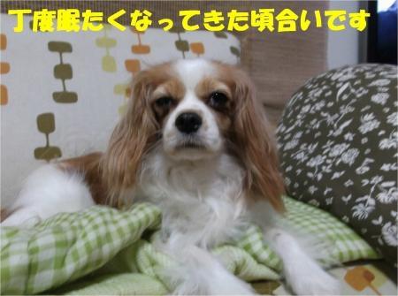 02_convert_20121010180723[1]