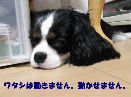 04_convert_20121010180756[1]