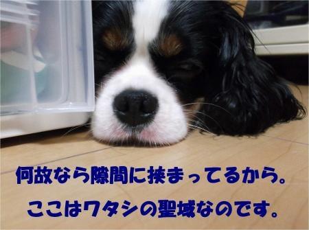 05_convert_20121010180830[1]