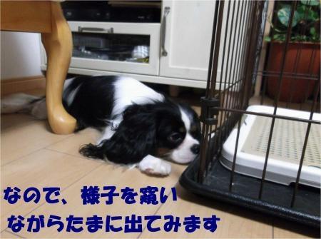 07_convert_20121010180946[1]
