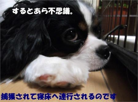 08_convert_20121010181020[1]