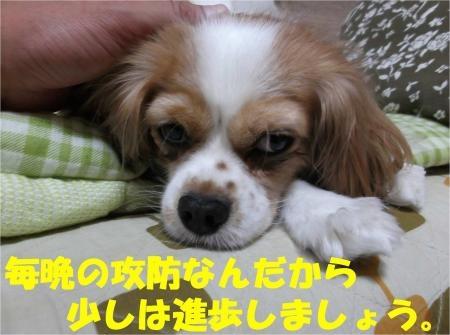 09_convert_20121010181128[1]