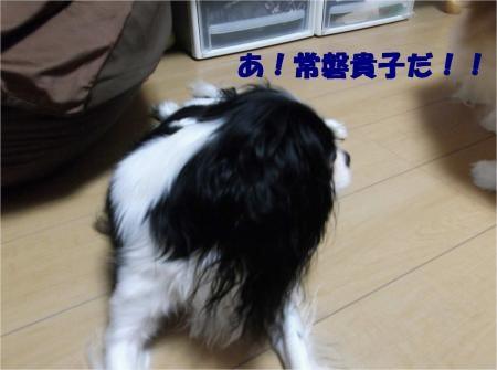 01_convert_20121012180107[1]