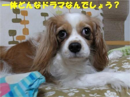 02_convert_20121012180137[1]