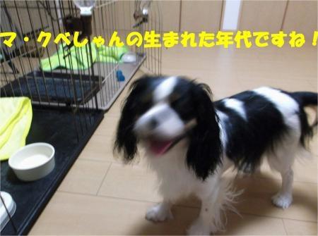 05_convert_20121012180310[1]
