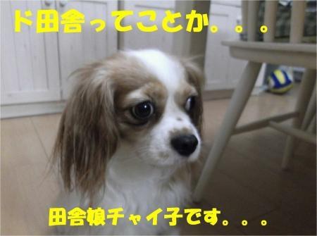 06_convert_20121012180339[1]