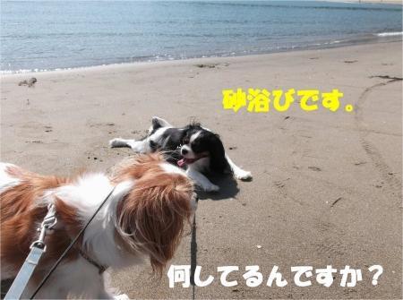 03_convert_20121015173746[1]