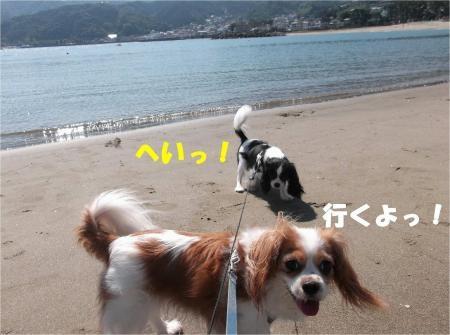 04_convert_20121015173827[1]