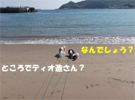 06_convert_20121015173916[1]