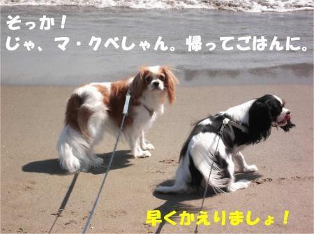 09_convert_20121015174120[1]
