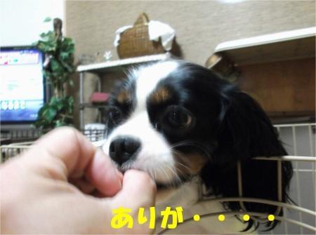 03_convert_20121016174909[1]