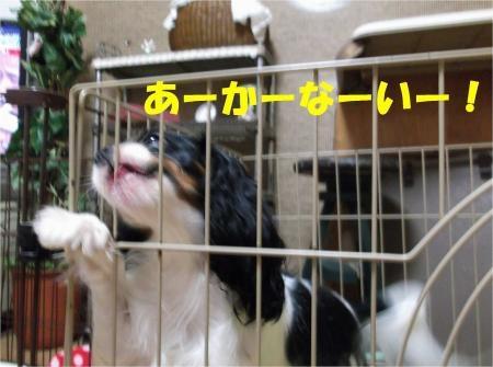 07_convert_20121016175254[1]