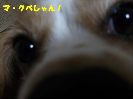 01_convert_20121017181838[1]