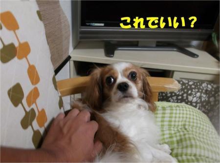 03_convert_20121017181913[1]