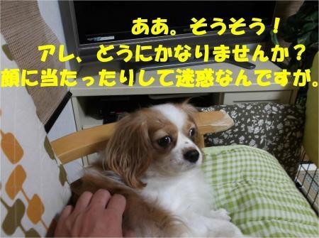 04_convert_20121017181930[1]