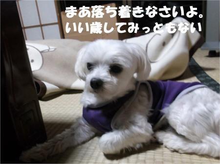 02_convert_20121019182401[1]