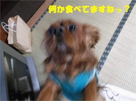 04_convert_20121019182434[1]