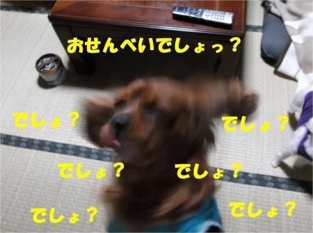 05_convert_20121019182451[1]