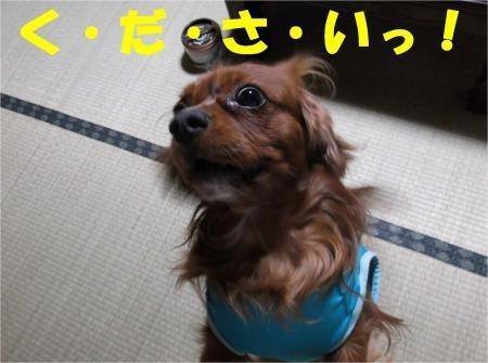06_convert_20121019182508[1]