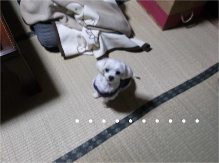 07_convert_20121019182524[1]