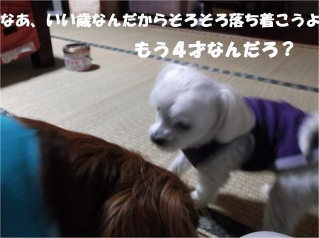 08_convert_20121019182542[1]