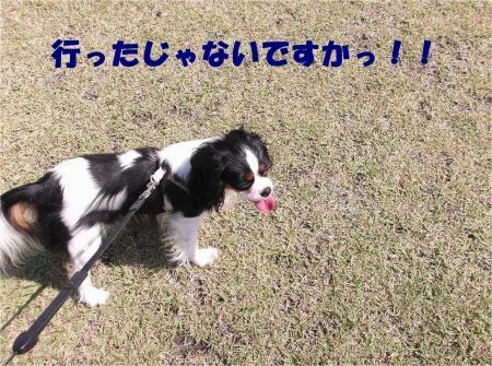 02_convert_20121023173048[1]
