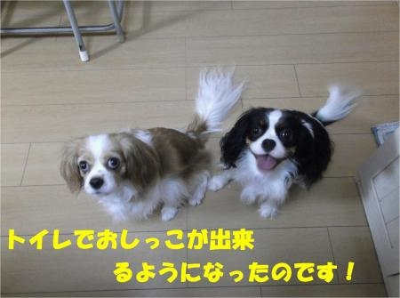 02_convert_20121025180108[1]