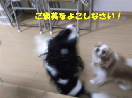 05_convert_20121025180157[1]