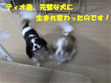 07_convert_20121025180230[1]