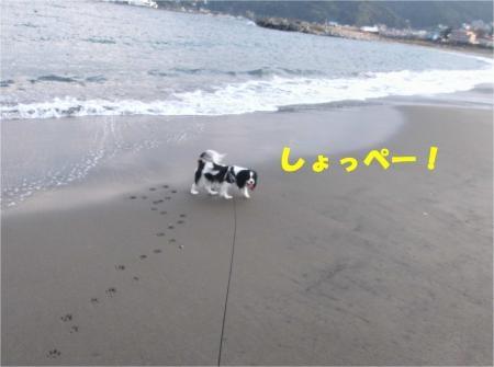 05_convert_20121029173553[1]