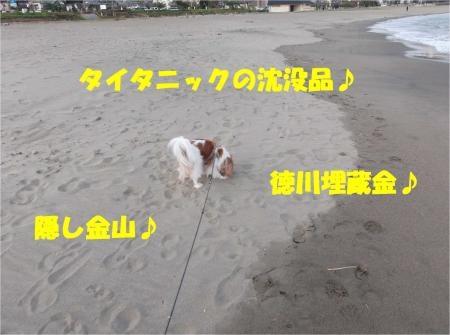 08_convert_20121029173638[1]
