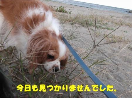 09_convert_20121029173654[1]