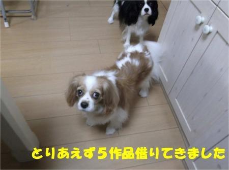 01_convert_20121030173414[1]