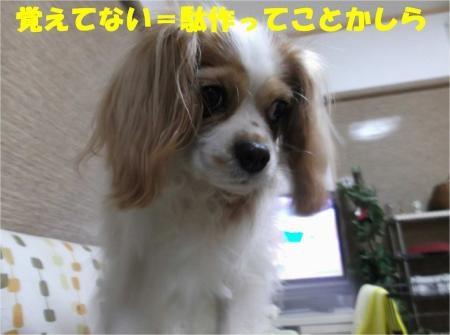 04_convert_20121030173501[1]