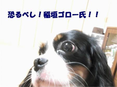 05_convert_20121030173517[1]