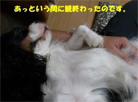 07_convert_20121030173532[1]