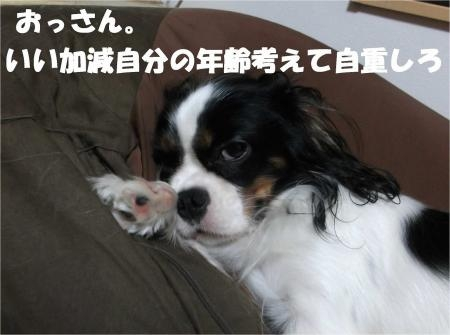 07_convert_20121031173537[1]