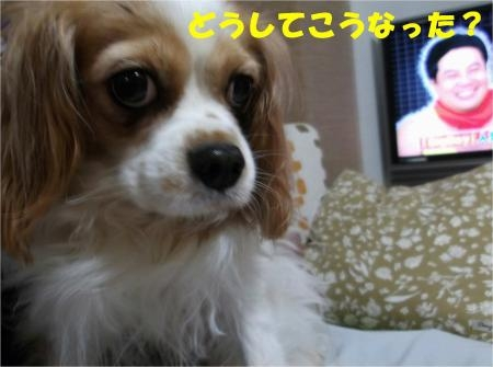 01_convert_20121101173653[1]