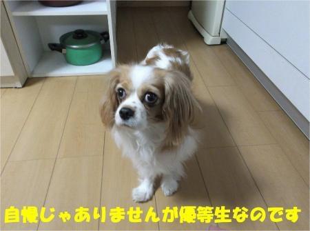 01_convert_20121107180355[1]