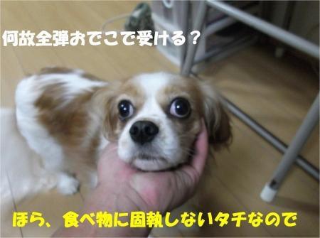 04_convert_20121115162836[1]