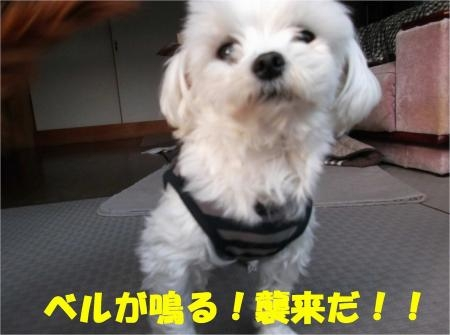 04_convert_20121121190534[1]