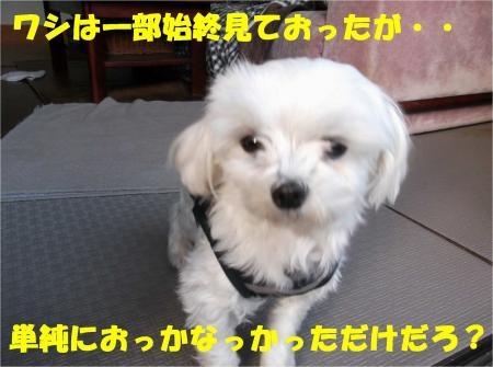 09_convert_20121121190654[1]