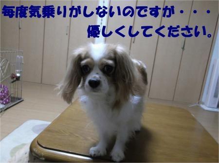 02_convert_20121122174507[1]