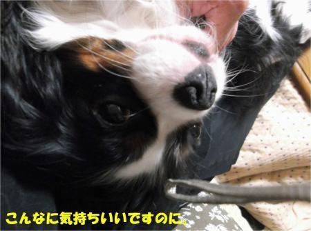 07_convert_20121122174635[1]