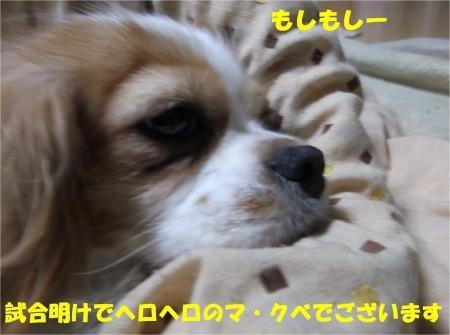 01-2_convert_20121203170953[1]