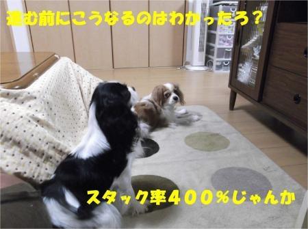 06_convert_20121203171113[1]
