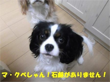 02_convert_20121211175848[1]