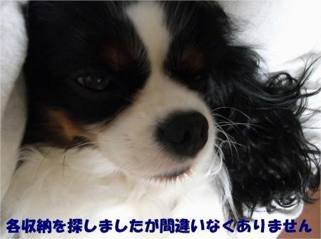 03_convert_20121211175905[1]